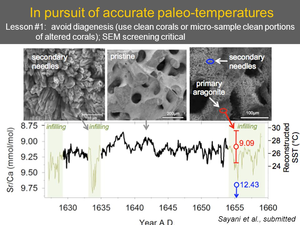 In pursuit of accurate paleo-temperatures Lesson #1: avoid diagenesis (use clean corals or micro-sample clean portions of altered corals); SEM screening critical Sayani et al., submitted
