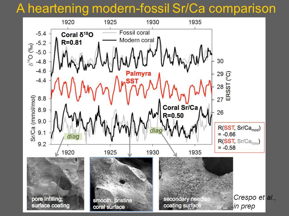 A heartening modern-fossil Sr/Ca comparison Crespo et al., in prep