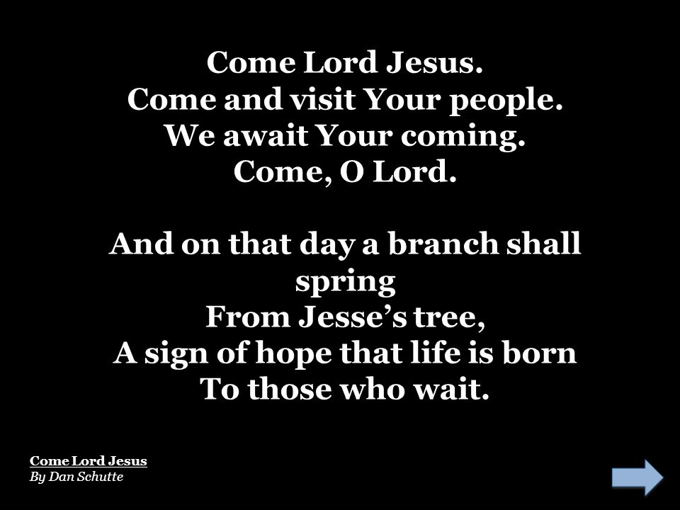Come Lord Jesus. Come and visit Your people. We await Your coming. Come, O Lord. And on that day a branch shall spring From Jesse's tree, A sign of ho