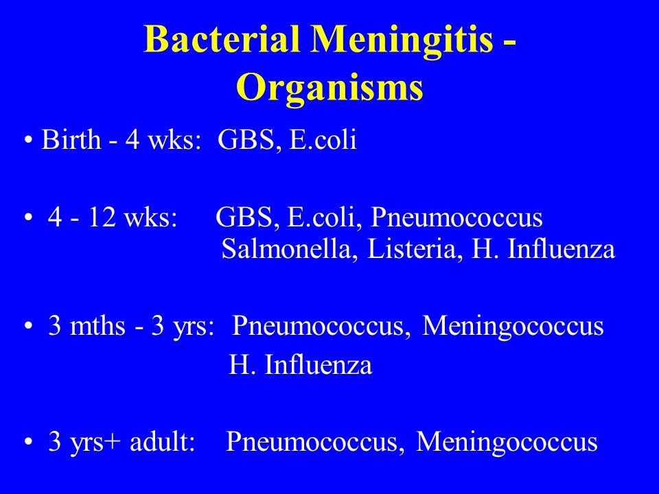 Bacterial Meningitis - Organisms Birth - 4 wks: GBS, E.coli 4 - 12 wks: GBS, E.coli, Pneumococcus Salmonella, Listeria, H. Influenza 3 mths - 3 yrs: P