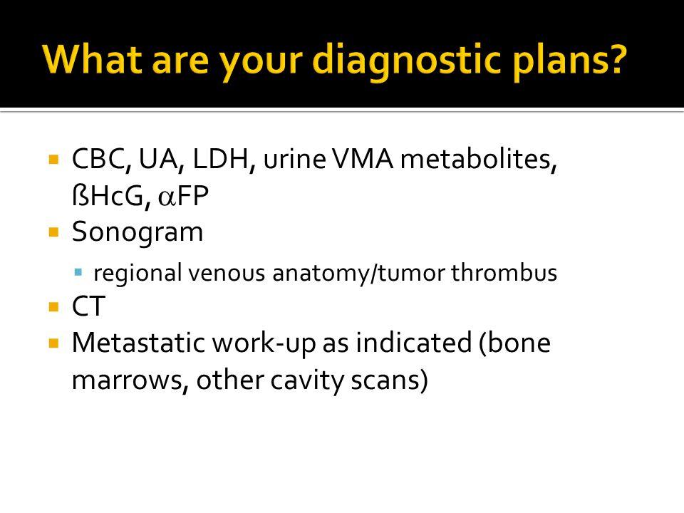  CBC, UA, LDH, urine VMA metabolites, ßHcG,  FP  Sonogram  regional venous anatomy/tumor thrombus  CT  Metastatic work-up as indicated (bone mar