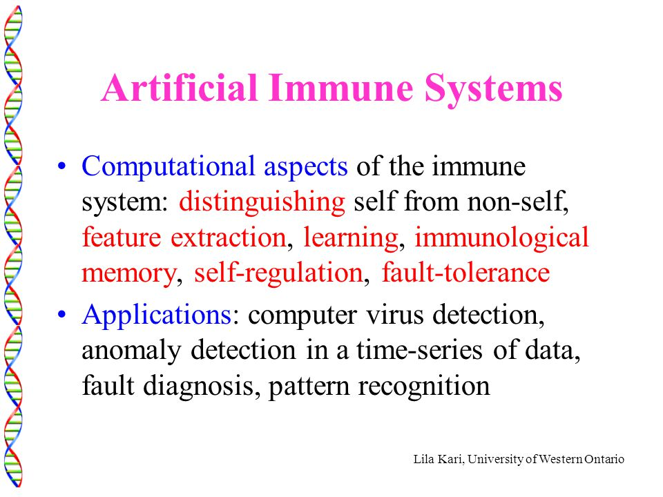 Lila Kari, University of Western Ontario Artificial Immune Systems Computational aspects of the immune system: distinguishing self from non-self, feat