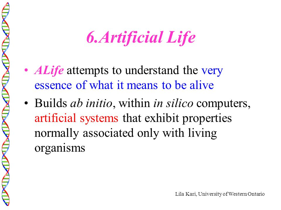 Lila Kari, University of Western Ontario 6.Artificial Life ALife attempts to understand the very essence of what it means to be alive Builds ab initio