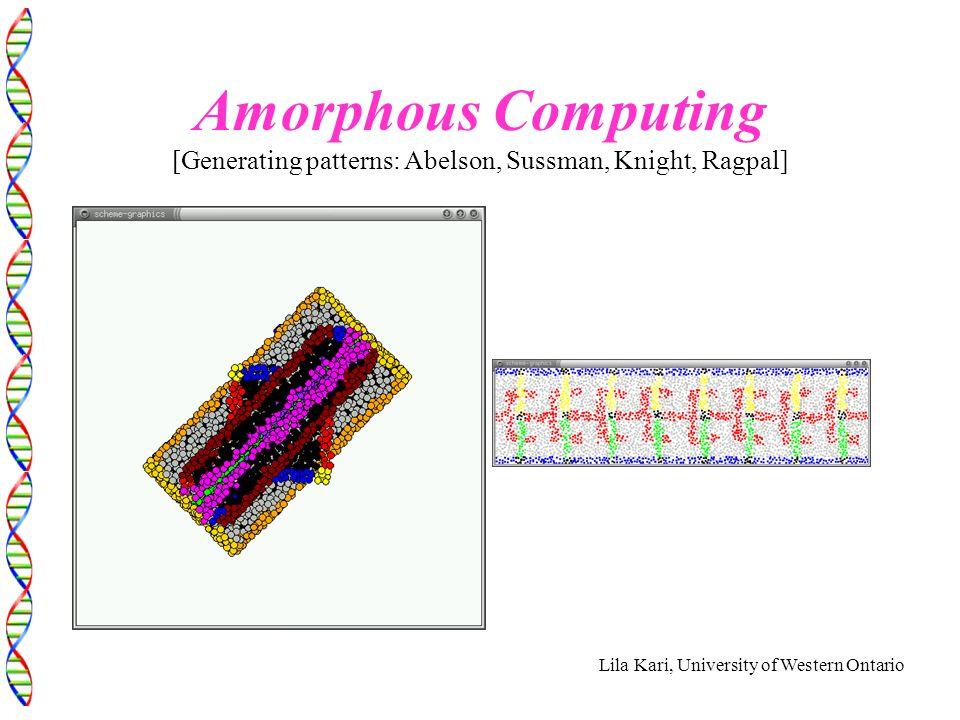 Lila Kari, University of Western Ontario Amorphous Computing [Generating patterns: Abelson, Sussman, Knight, Ragpal]