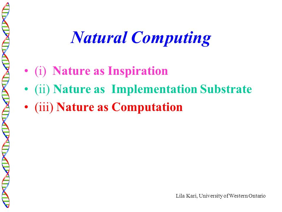 Lila Kari, University of Western Ontario Natural Computing (i) Nature as Inspiration (ii) Nature as Implementation Substrate (iii) Nature as Computation