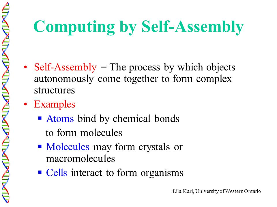 Lila Kari, University of Western Ontario Computing by Self-Assembly Self-Assembly = The process by which objects autonomously come together to form co