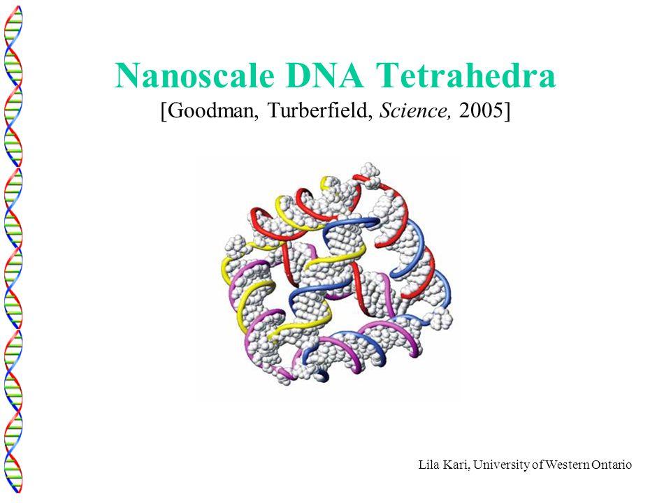 Lila Kari, University of Western Ontario Nanoscale DNA Tetrahedra [Goodman, Turberfield, Science, 2005]