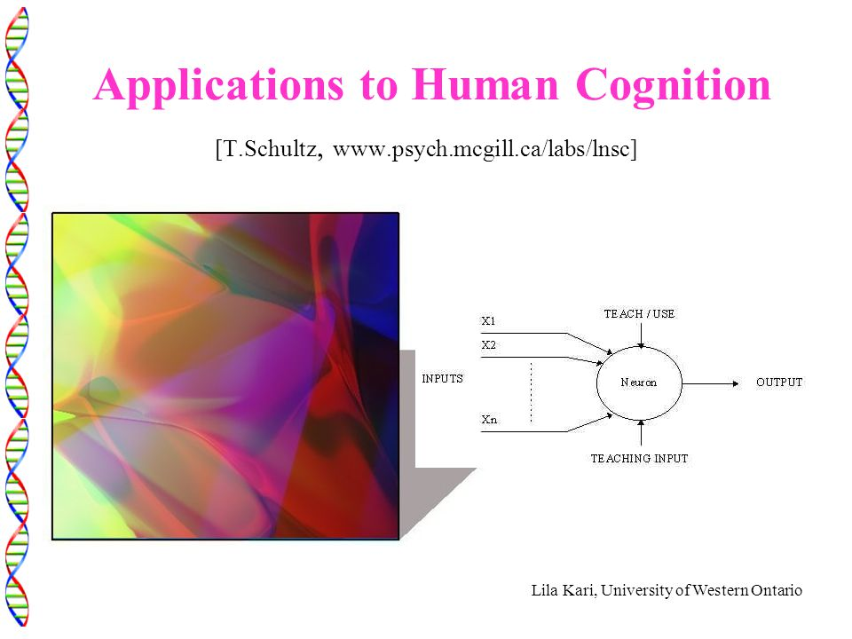 Lila Kari, University of Western Ontario Applications to Human Cognition [T.Schultz, www.psych.mcgill.ca/labs/lnsc]