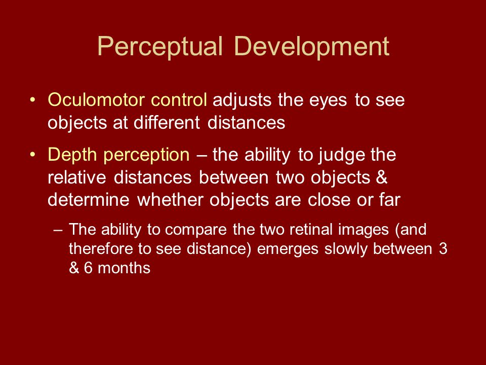 Perceptual Development Oculomotor control adjusts the eyes to see objects at different distances Depth perception – the ability to judge the relative