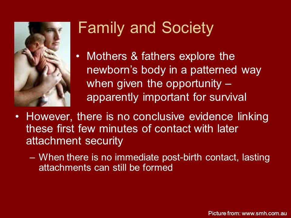 Family and Society However, there is no conclusive evidence linking these first few minutes of contact with later attachment security –When there is n
