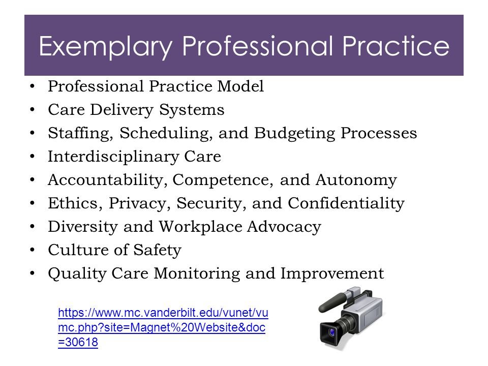 Exemplary Professional Practice Professional Practice Model Care Delivery Systems Staffing, Scheduling, and Budgeting Processes Interdisciplinary Care