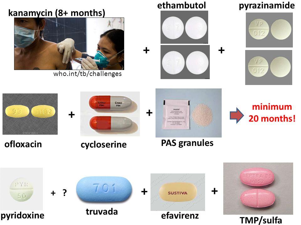 + + + + ethambutolpyrazinamide ofloxacin cycloserine PAS granules kanamycin (8+ months) minimum 20 months.