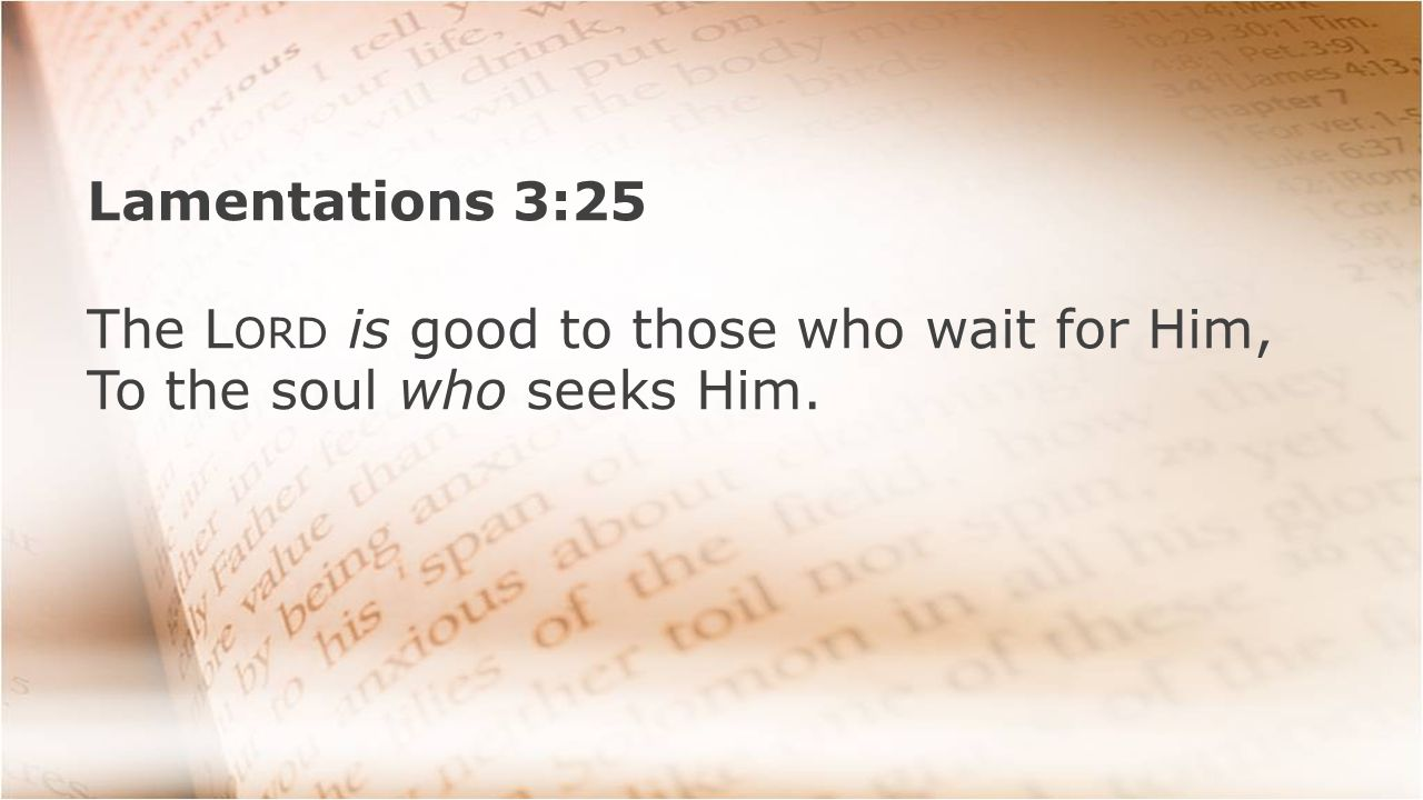 Lamentations 3:25 The L ORD is good to those who wait for Him, To the soul who seeks Him.