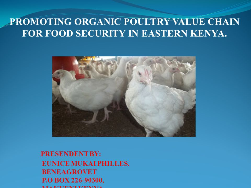 PROMOTING ORGANIC POULTRY VALUE CHAIN FOR FOOD SECURITY IN EASTERN KENYA. PRESENDENT BY: EUNICE MUKAI PHILLES. BENEAGROVET P.O BOX 226-90300, MAKUENI