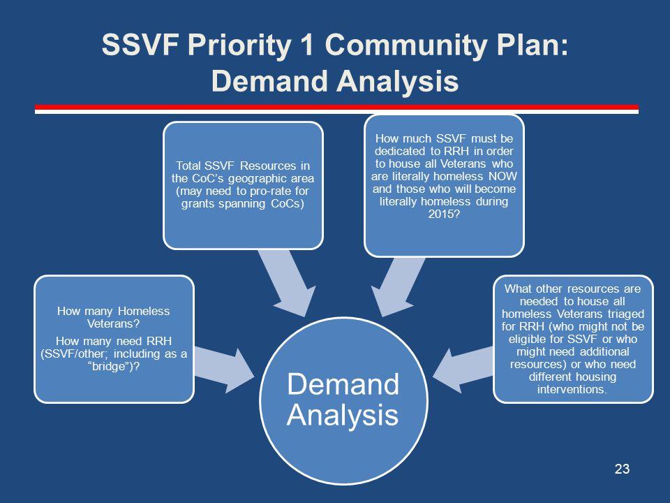 SSVF Priority 1 Community Plan: Demand Analysis Demand Analysis How many Homeless Veterans.