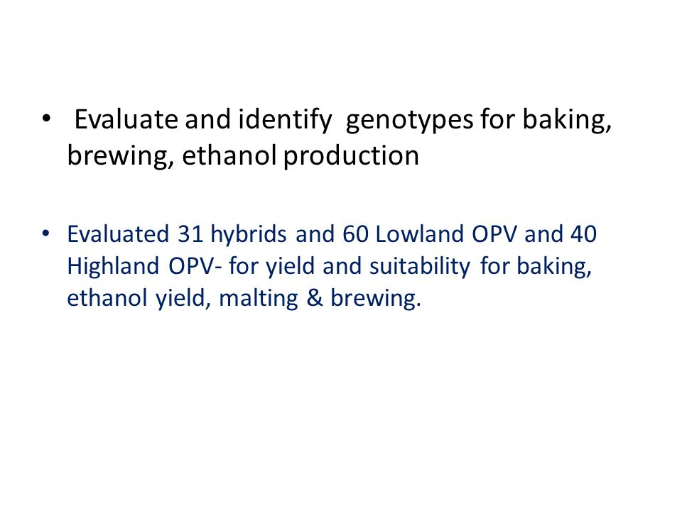 Evaluate and identify genotypes for baking, brewing, ethanol production Evaluated 31 hybrids and 60 Lowland OPV and 40 Highland OPV- for yield and suitability for baking, ethanol yield, malting & brewing.