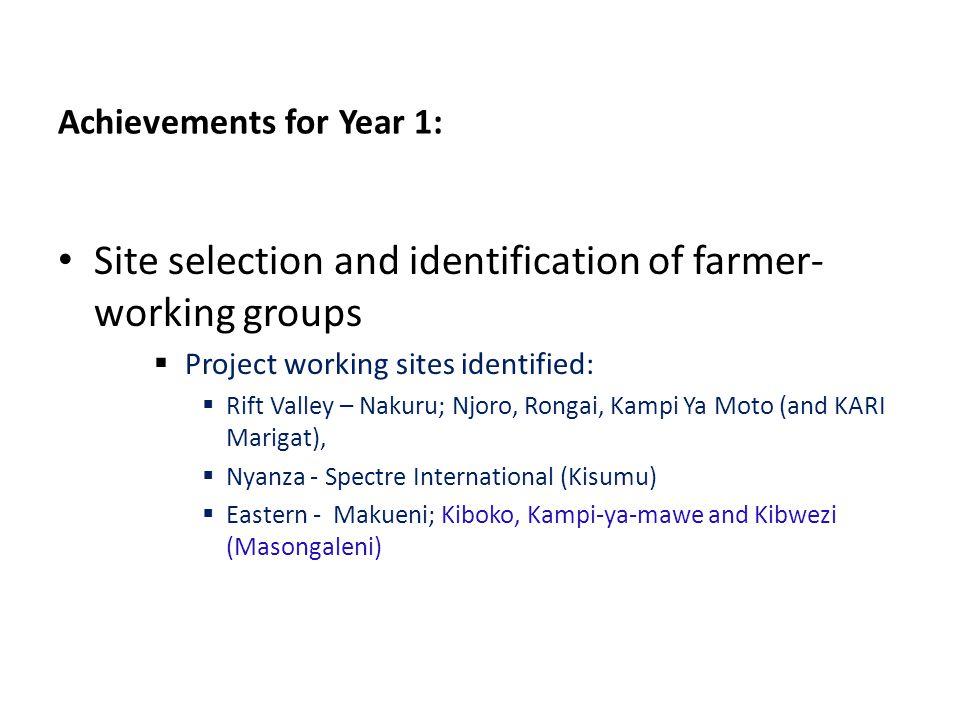 Achievements for Year 1: Site selection and identification of farmer- working groups  Project working sites identified:  Rift Valley – Nakuru; Njoro, Rongai, Kampi Ya Moto (and KARI Marigat),  Nyanza - Spectre International (Kisumu)  Eastern - Makueni; Kiboko, Kampi-ya-mawe and Kibwezi (Masongaleni)