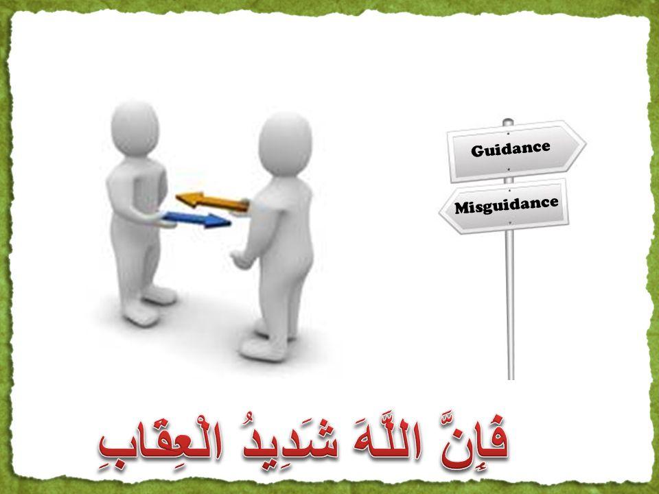 Misguidance Guidance