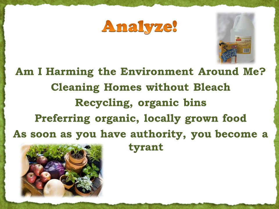Am I Harming the Environment Around Me? Cleaning Homes without Bleach Recycling, organic bins Preferring organic, locally grown food As soon as you ha