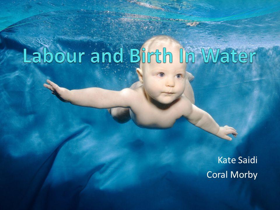 Kate Saidi Coral Morby