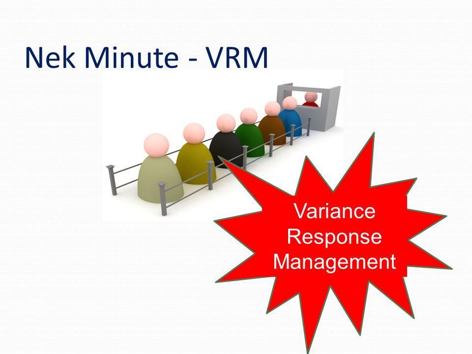 Nek Minute - VRM Variance Response Management