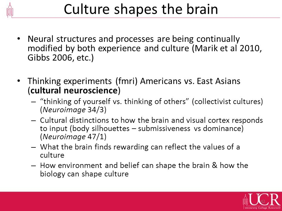 Culture shapes the brain Neural structures and processes are being continually modified by both experience and culture (Marik et al 2010, Gibbs 2006, etc.) Thinking experiments (fmri) Americans vs.