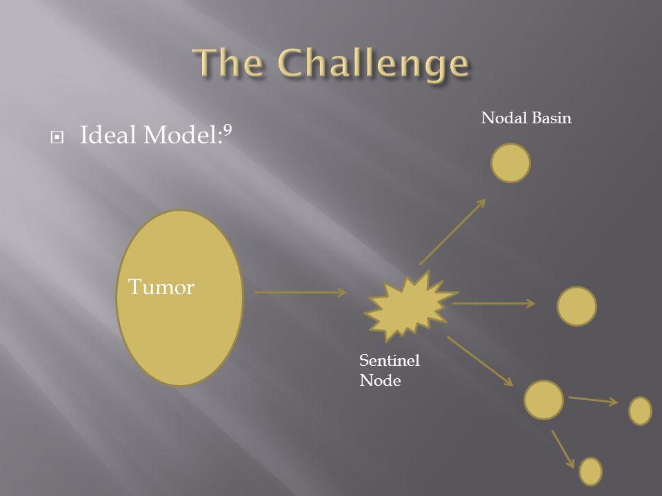  Ideal Model: 9 Tumor Sentinel Node Nodal Basin