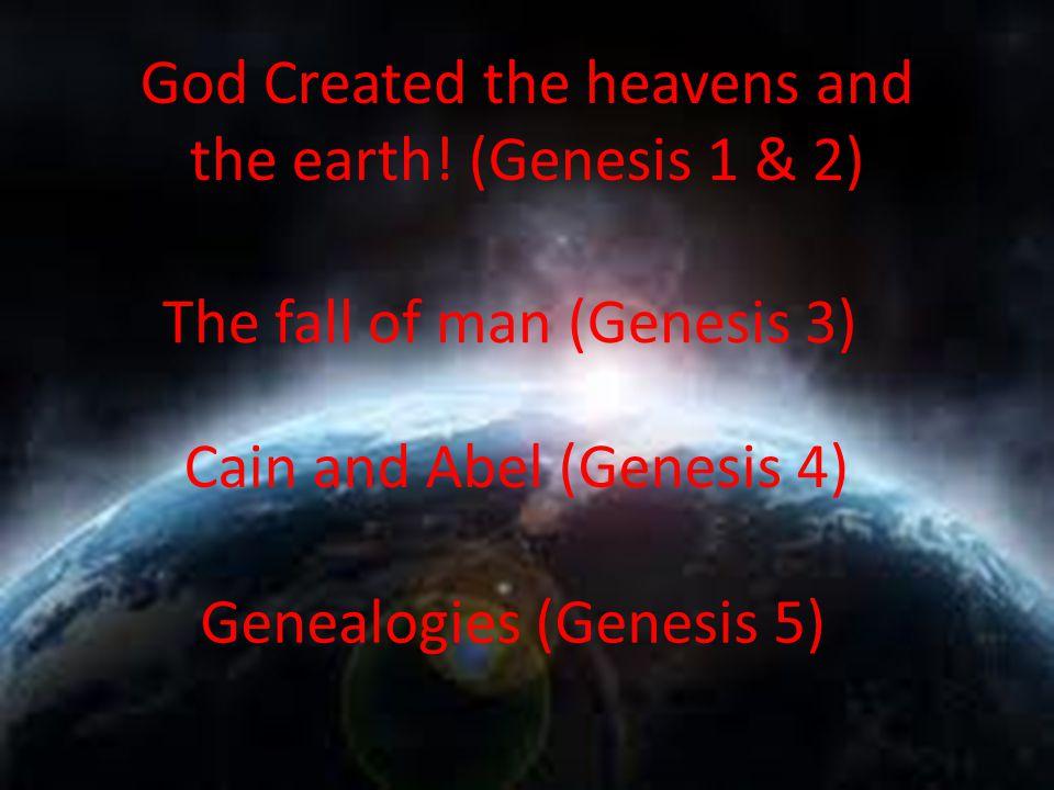 God Created the heavens and the earth! (Genesis 1 & 2) The fall of man (Genesis 3) Cain and Abel (Genesis 4) Genealogies (Genesis 5)