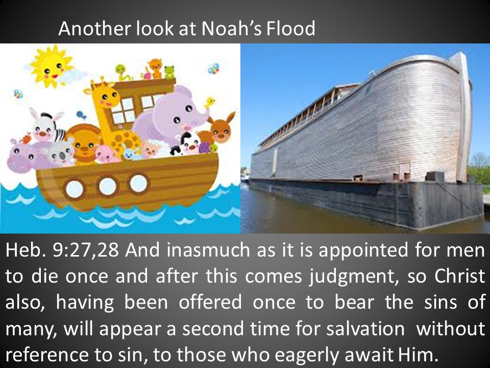 Another look at Noah's Flood Heb. 9:27,28 And inasmuch as it is appointed for men to die once and after this comes judgment, so Christ also, having be