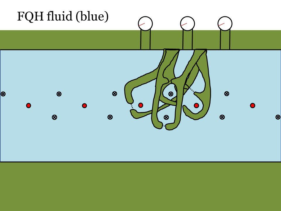 FQH fluid (blue)