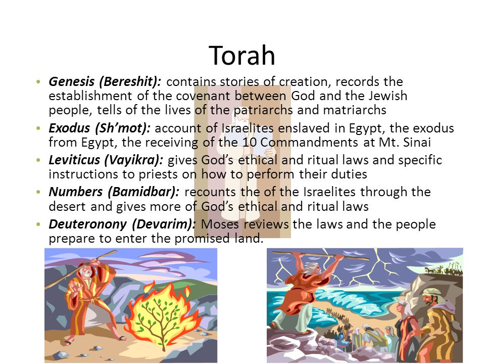 Torah Genesis (Bereshit): contains stories of creation, records the establishment of the covenant between God and the Jewish people, tells of the live