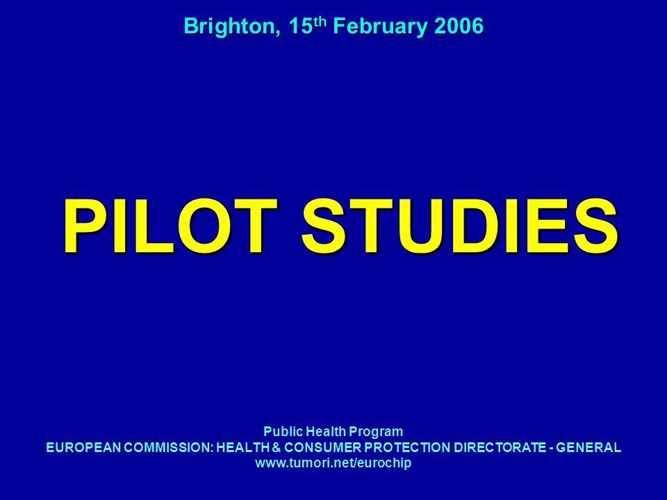 PILOT STUDIES Brighton, 15 th February 2006 Public Health Program EUROPEAN COMMISSION: HEALTH & CONSUMER PROTECTION DIRECTORATE - GENERAL www.tumori.net/eurochip