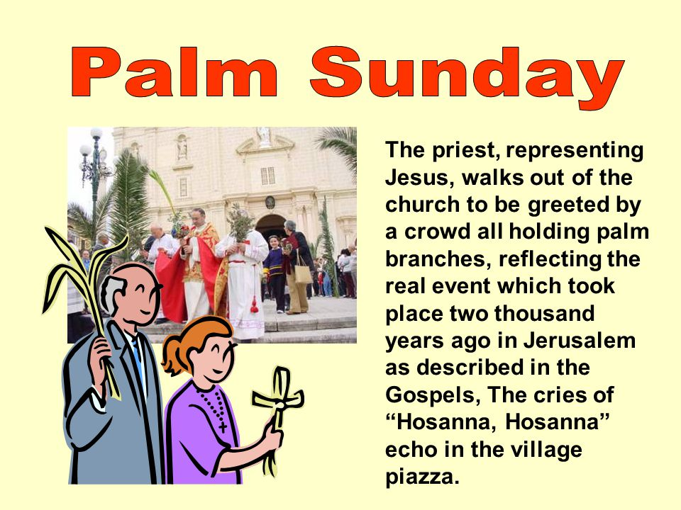 The priest, representing Jesus, walks out of the church to be greeted by a crowd all holding palm branches, reflecting the real event which took place two thousand years ago in Jerusalem as described in the Gospels, The cries of Hosanna, Hosanna echo in the village piazza.