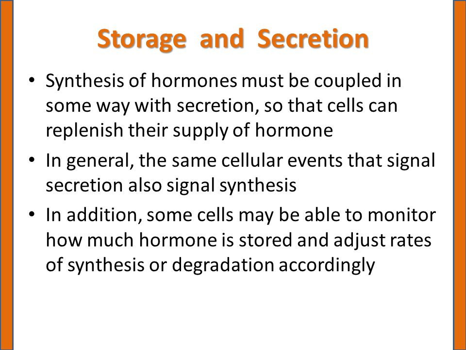 Storage and Secretion Synthesis of hormones must be coupled in some way with secretion, so that cells can replenish their supply of hormone In general, the same cellular events that signal secretion also signal synthesis In addition, some cells may be able to monitor how much hormone is stored and adjust rates of synthesis or degradation accordingly