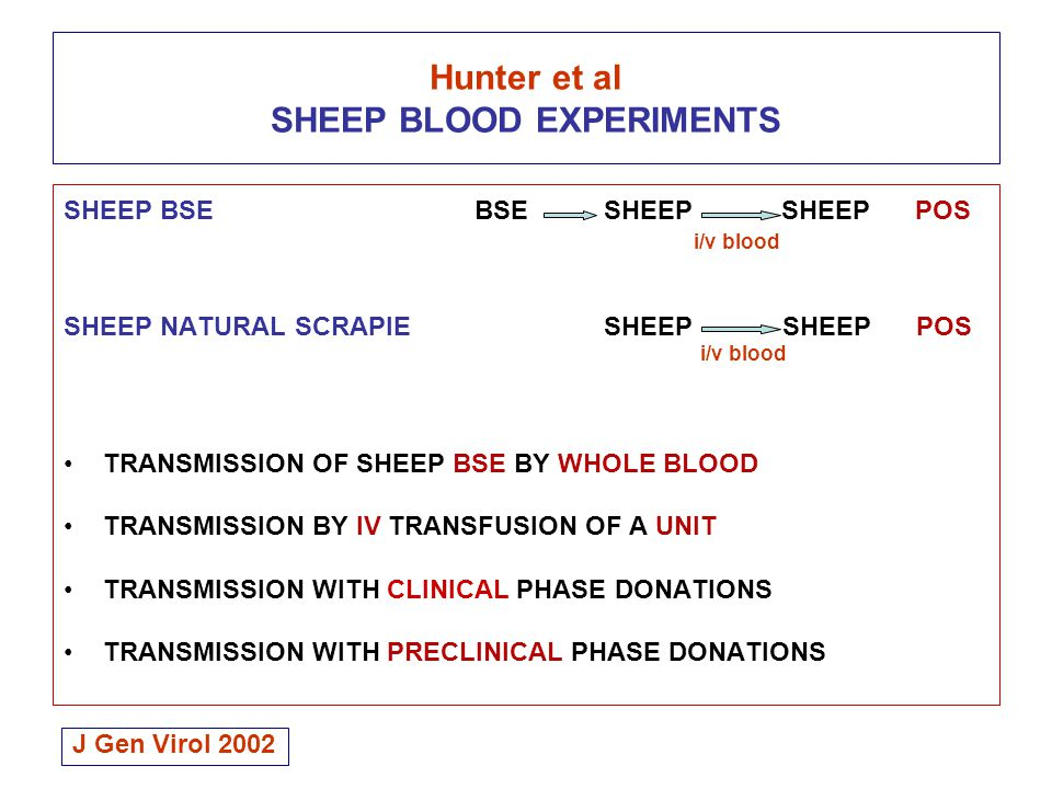 Hunter et al SHEEP BLOOD EXPERIMENTS SHEEP BSE BSE SHEEP SHEEP POS i/v blood SHEEP NATURAL SCRAPIE SHEEP SHEEP POS i/v blood TRANSMISSION OF SHEEP BSE BY WHOLE BLOOD TRANSMISSION BY IV TRANSFUSION OF A UNIT TRANSMISSION WITH CLINICAL PHASE DONATIONS TRANSMISSION WITH PRECLINICAL PHASE DONATIONS J Gen Virol 2002