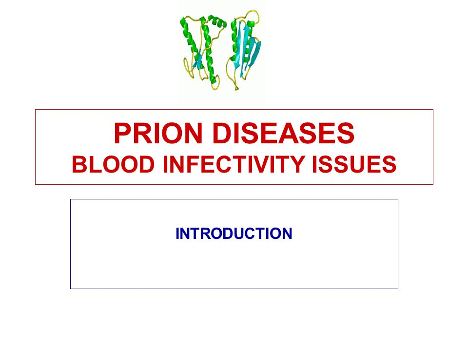 PRION DISEASES BLOOD INFECTIVITY ISSUES INTRODUCTION