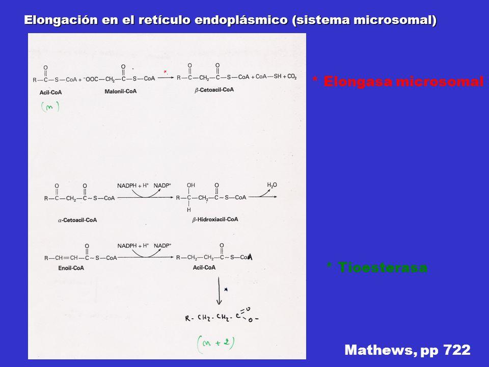Elongación en el retículo endoplásmico (sistema microsomal) Mathews, pp 722 * Elongasa microsomal * Tioesterasa