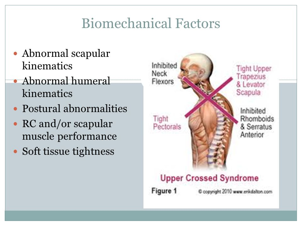 Biomechanical Factors Abnormal scapular kinematics Abnormal humeral kinematics Postural abnormalities RC and/or scapular muscle performance Soft tissue tightness