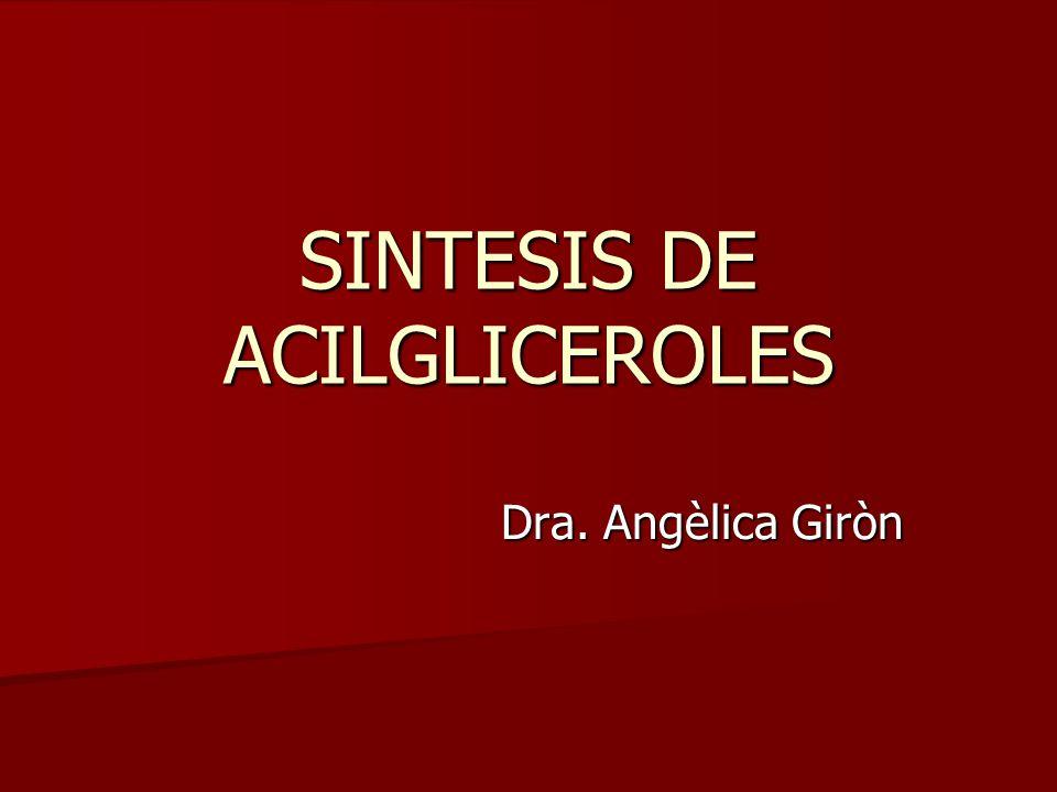 SINTESIS DE ACILGLICEROLES Dra. Angèlica Giròn