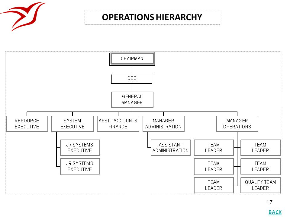 17 OPERATIONS HIERARCHY BACK