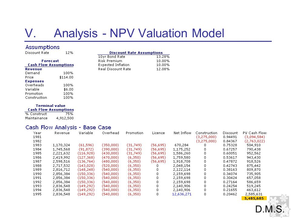 V.Analysis - NPV Valuation Model D.M.S.