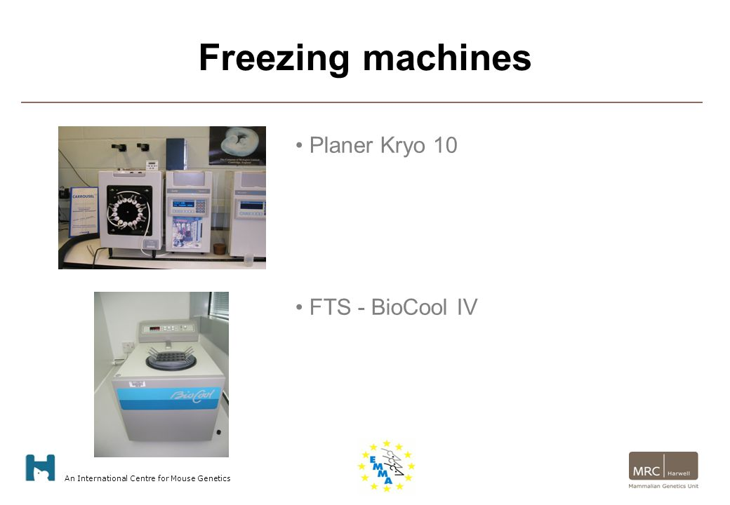 An International Centre for Mouse Genetics Freezing machines Planer Kryo 10 FTS - BioCool IV