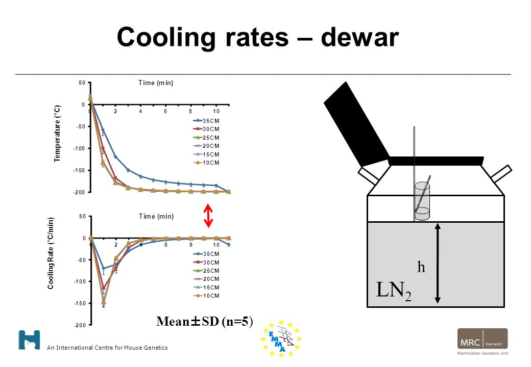 An International Centre for Mouse Genetics Mean±SD (n=5) Cooling Rate LN 2 h Cooling rates – dewar