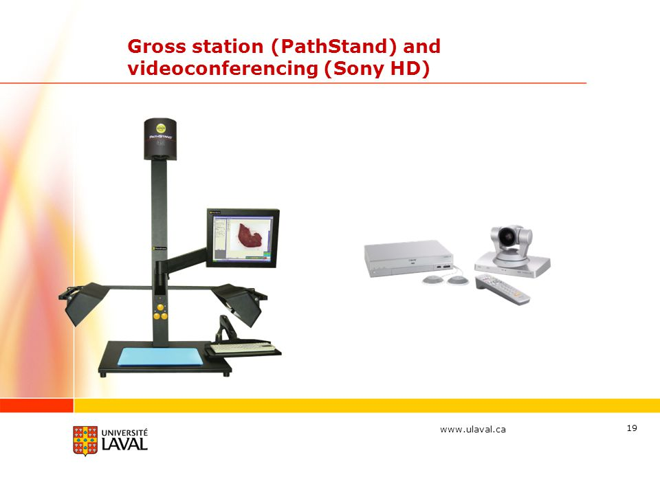 www.ulaval.ca 19 Gross station (PathStand) and videoconferencing (Sony HD)