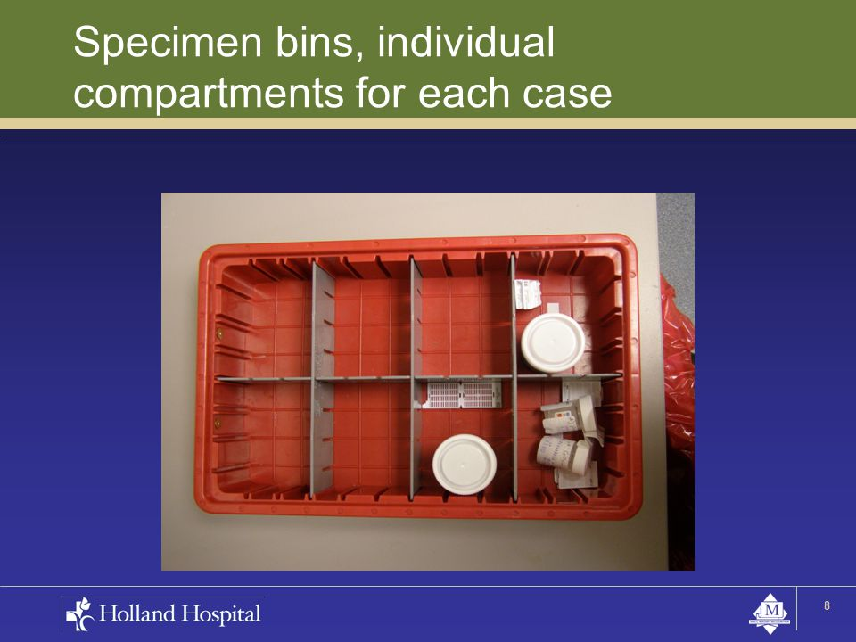 Specimen bins, individual compartments for each case 8