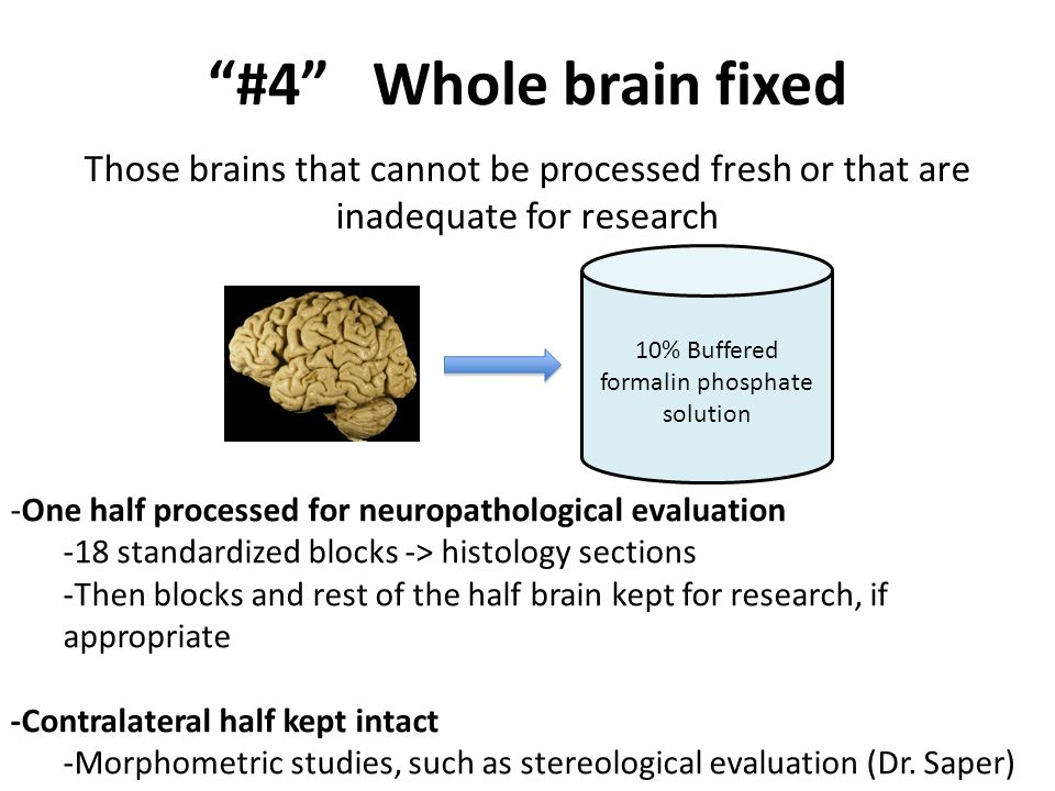Those brains that cannot be processed fresh or that are inadequate for research 10% Buffered formalin phosphate solution #4 Whole brain fixed -One half processed for neuropathological evaluation -18 standardized blocks -> histology sections -Then blocks and rest of the half brain kept for research, if appropriate -Contralateral half kept intact -Morphometric studies, such as stereological evaluation (Dr.
