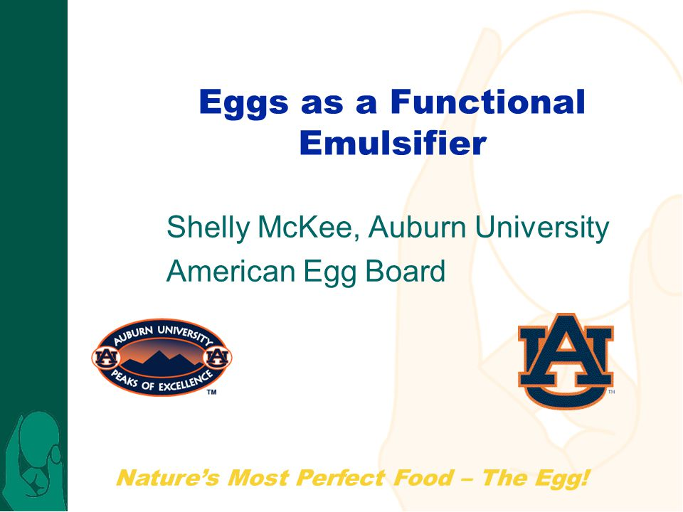 Nature's Most Perfect Food – The Egg.