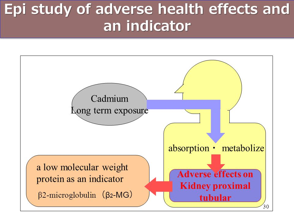 Epi study of adverse health effects and an indicator Cadmium Long term exposure β2-microglobulin ( β 2 -MG ) Adverse effects on Kidney proximal tubula