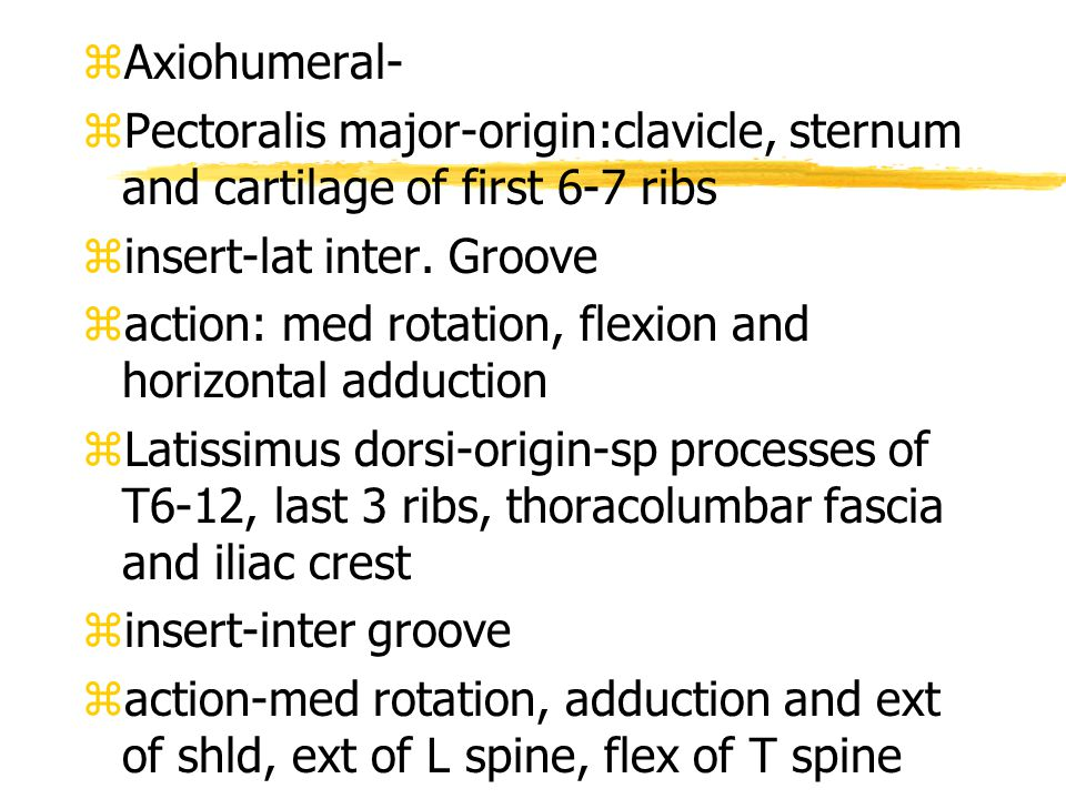 zAxiohumeral- zPectoralis major-origin:clavicle, sternum and cartilage of first 6-7 ribs zinsert-lat inter.
