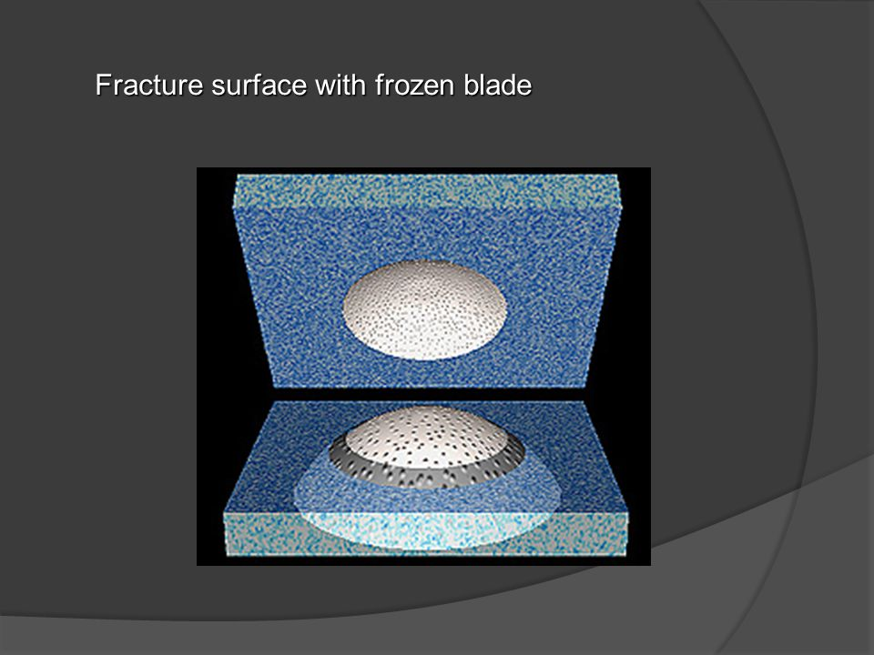 Fracture surface with frozen blade